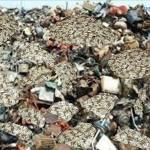 Dollary-na-svalke-Dollars-in-a-landfill