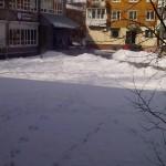 Sneg-napadal-vesnoj