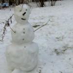 Snegoviki-vesnoj