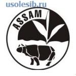 CHaj-shtata-Assam