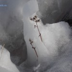 Sneg-podtayal